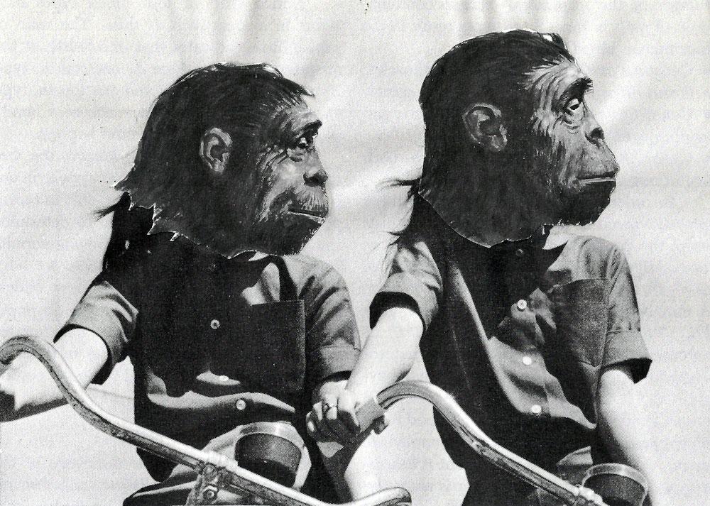 monkeys on bikes, twins colllage